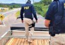PRF apreende carga de madeira nativa transportada ilegalmente