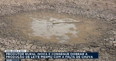 Mais de um milhão de pessoas são afetadas pela estiagem na Bahia